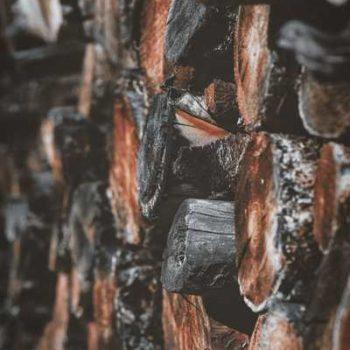 photo rondins de bois
