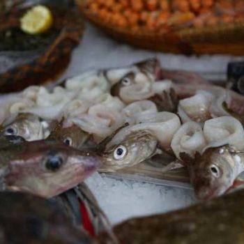 photo bouquet de poissons